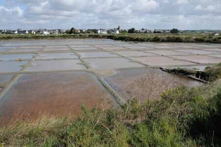 salt marsh: France, the salt evaporation pond in Guerande Editorial