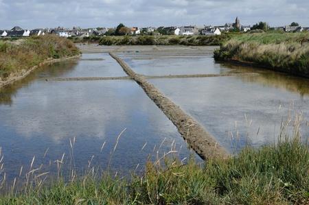 evaporacion: Francia, la laguna de evaporación de sal en Guérande