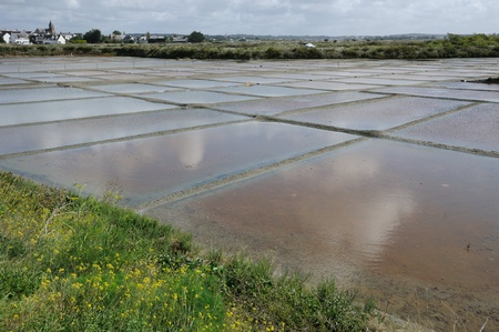 watershed: France, the salt evaporation pond in Guerande Editorial