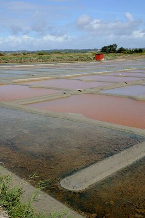 evaporacion: Francia, la laguna de evaporaci�n de sal en Guerande