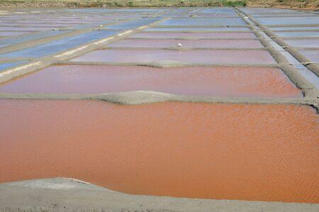 salinity: France, the salt evaporation pond in Guerande Editorial