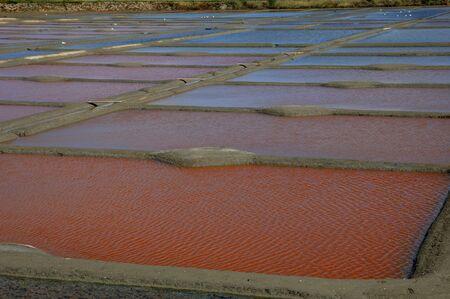 salinity: France, the salt evaporation pond in Guerande Stock Photo