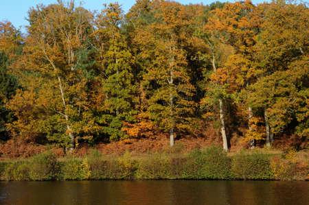 vaux: France,  les Vaux de Cernay park in autumn