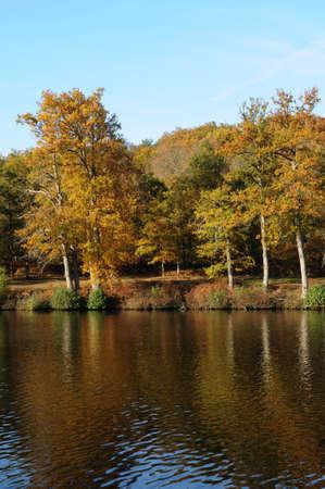 France,  les Vaux de Cernay park in autumn Stock Photo - 13403933