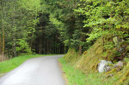 haut: France, a small road near Riquewihr in Haut Rhin