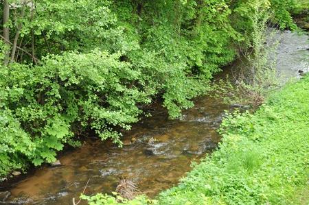 bas: France, a brook in Obernai in Bas Rhin