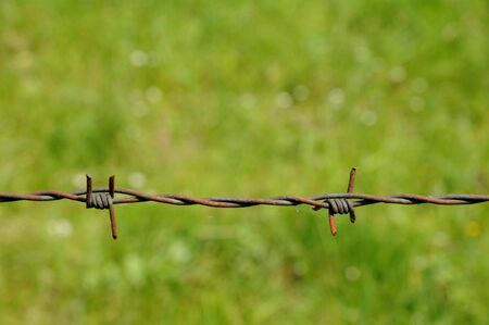 wire: horizontal picture of barbed wire in meadow Stock Photo