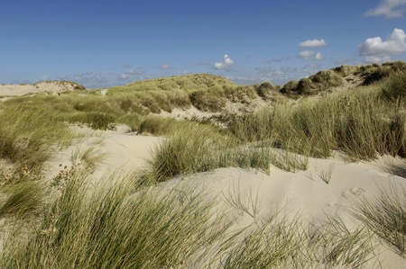 plage: France, the dune of  Stella Plage in Nord Pas de Calais Stock Photo