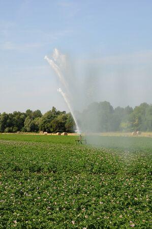 evaporarse: Francia, el riego en un campo