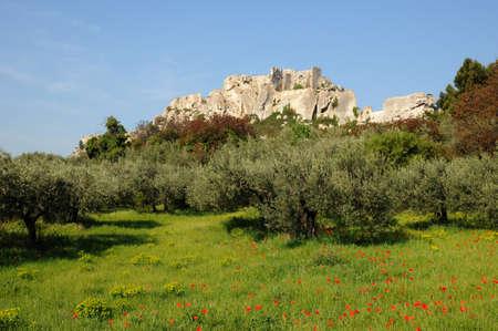 France, typical landscapes of Les-Baux-de-Provence Stock Photo - 18528482