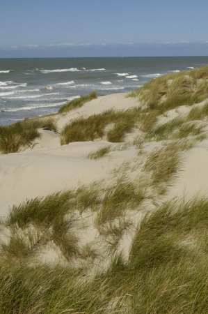 pas: France, the dune of  Stella Plage in Nord Pas de Calais Stock Photo