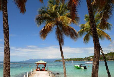 France, seaside of Sainte Anne in Guadeloupe