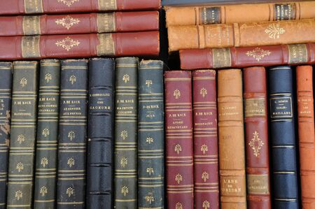 antiquary: France, old books in an antique shop