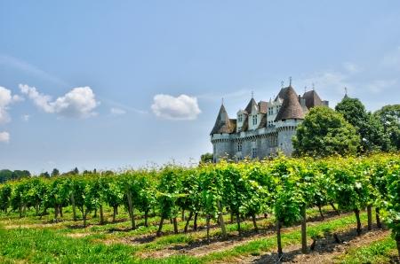 Frankrijk, wijngaard en het kasteel van Monbazillac in Dordogne