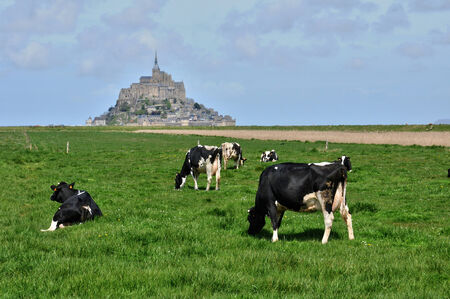 France, the picturesque Mont Saint Michel photo