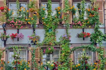haut rhin: Francia, la pintoresca ciudad de Colmar en Haut Rhin Foto de archivo