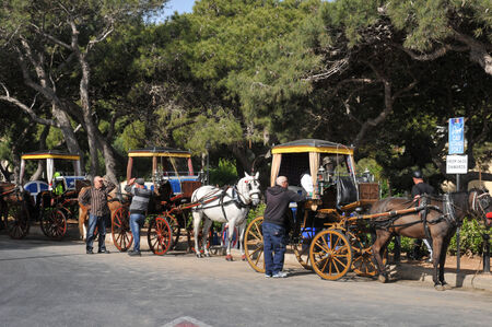 horse drawn carriage: Republic of Malta, horse, horse drawn carriage in the city of Mdina