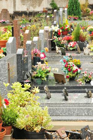 vaux: Ile de France, the cemetery of  Vaux sur Seine Editorial