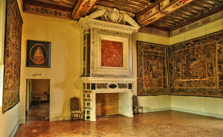 gironde: France,  renaissance fire place in the castle of Cadillac in Gironde