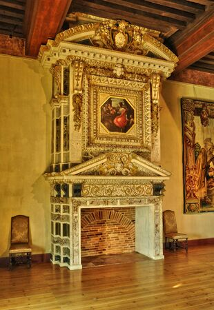 fire place: France,  renaissance fire place in the castle of Cadillac in Gironde