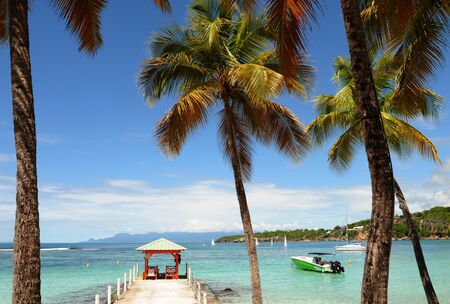 guadeloupe: France, seaside of Sainte Anne in Guadeloupe