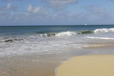 martinique: France, Martinique, Salines beach in Sainte Anne