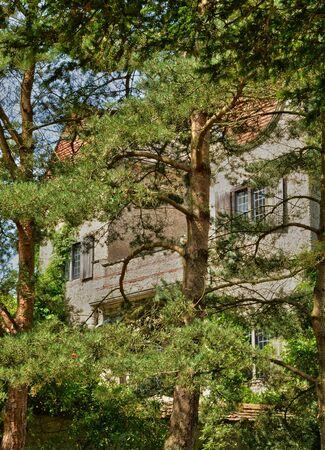 bois: France, the Bois des Moutiers park in Varengeville sur Mer Editorial