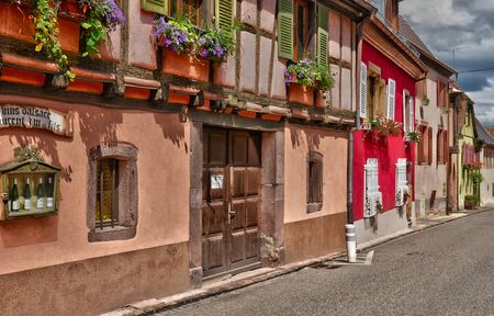 alsace: France, wine tasting cellarin the village of Niedermorschwirh in alsace Editorial