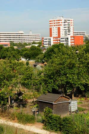 les: ile de  France, allotment garden in Les Mureaux