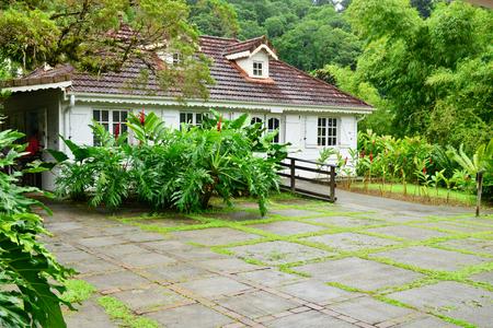 France, Martinique, the picturesque garden of Balata Stok Fotoğraf