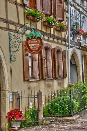 grower: France, the picturesque village of Eguisheim in Alsace