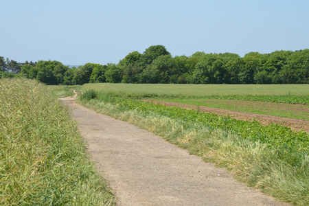 ile de france: Ile de France, the picturesque landscape of Auvers sur Oise