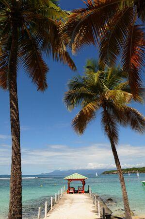 anne: France, seaside of Sainte Anne in Guadeloupe