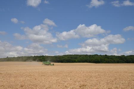 cosechadora: Ile de France, combine harvester in the village of Fontenay Saint Pere Foto de archivo