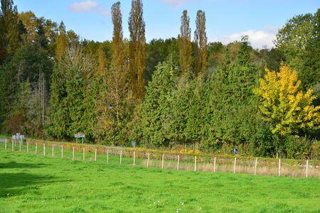 bois: Ile de France, landscape of the picturesque village of Saint Lambert des Bois