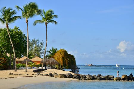 indies: Martinique, the picturesque seaside of Sainte Anne