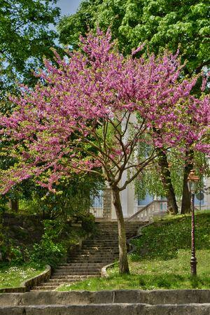 ile de france: Ile de France, the picturesque village of Villennes sur Seine Stock Photo