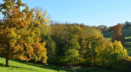 bois: Ile de France, the picturesque village of Breuil Bois Robert
