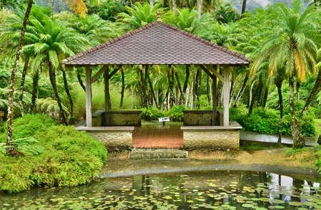 martinique: France, Martinique, the picturesque garden of Balata Stock Photo