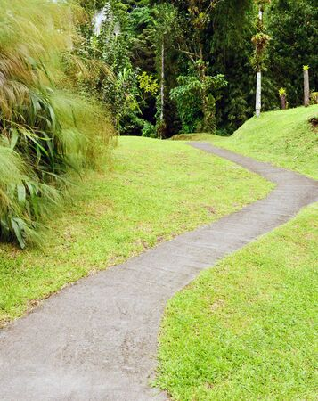 morne: Martinique, the domaine d emeraude park in Morne Rouge in West Indies Stock Photo
