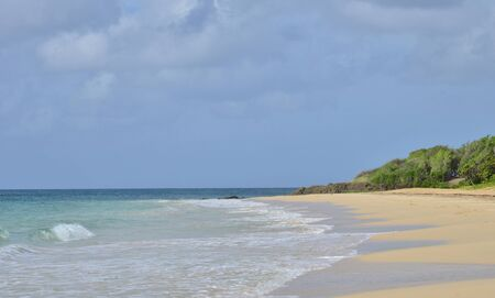 indies: Martinique, the picturesque beach of les salines of Sainte Anne in West Indies Stock Photo