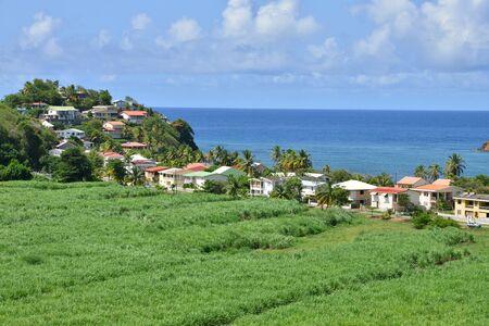 indies: Martinique, the picturesque village of Tartane in West Indies
