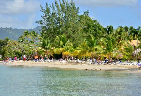 martinique: Martinique, the coast of Sainte Anne in West Indies