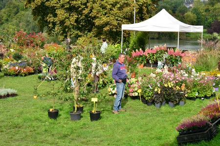 flower show: Ile de France, the flower show of les mureaux.september 19, 2015