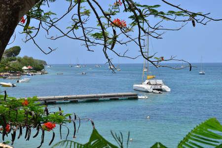 martinique: Martinique, the picturesque seaside of Sainte Anne in West Indies