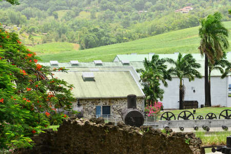 clement: Martinique, the park of picturesque Habitation Clement in Le Francois in West Indies Editorial