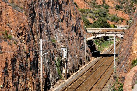 mimose: la linea ferroviaria del massiccio dell'Esterel, Saint Raphael, Francia