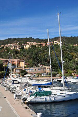 mimose: Th�oule sur Mer, Francia - 14 Aprile 2016: il porto turistico