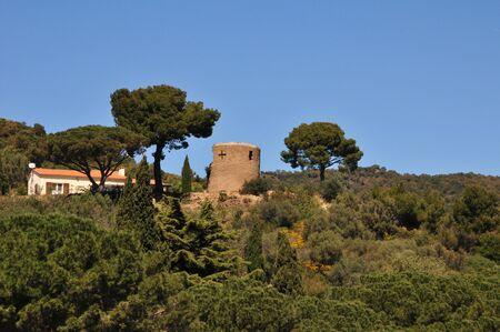 mimose: Bormes les Mimosas, Francia - 18 aprile 2016: una vecchia torre