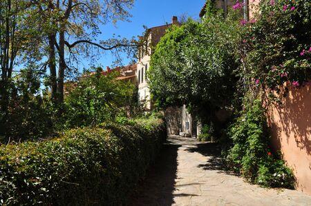mimose: Bormes les Mimosas, Francia - l'antico e pittoresco paese in primavera